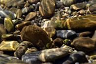 stones_under_water